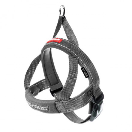 Quick Fit Harness