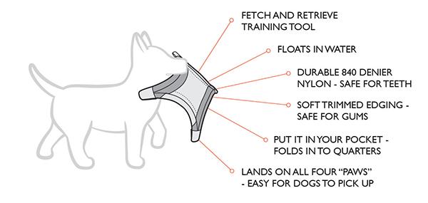 dogstar flyer features